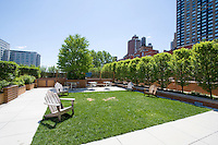 Garden at 215 East 96th St