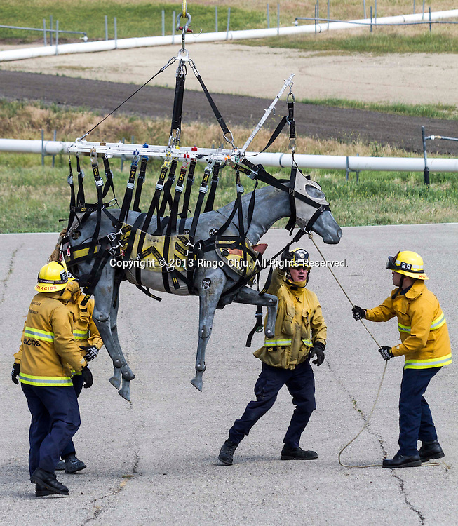The members of Los Angeles County and City Fire Departments, rescue a horse dummy during a large-animal rescue training session on Friday April 5, 2013 in Los Angeles, California. The event focus on horses and cattle in distress -- trapped or injured. (Photo by Ringo Chiu/PHOTOFORMULA.com)..