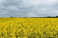 245 Bio-Bauern