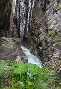 Walk a narrow walkway carved through Rosenlaui Glacier Gorge / Gletscherschlucht, near Meiringen, Switzerland, the Alps, Europe. In this deep ravine, the Weissenbach River has eroded potholes into a natural cathedral of slate and limestone. This image was stitched from multiple overlapping photos.
