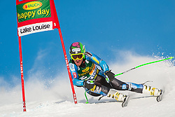 25.11.2012, Lake Louise, CAN, FIS Ski Alpin Weltcup, Lake Louise, SuperG, Herren, im Bild Ted Ligety of USA // during Mens SuperG of FIS Ski Alpine World Cup at Lake Louise, Canada on 2012/11/25. EXPA Pictures © 2012, PhotoCredit: EXPA/ ESPA/ John Evely