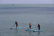 Two women and a man on Stand Up Paddle Boards SUP in the English Channel by Folkestone Harbour, Kent, England, United Kingdom.