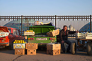A man sells fresh fruit from the back of his Lada in Chorsu Bazaar on 1st March 2014 in Taskhent in Uzbekistan.