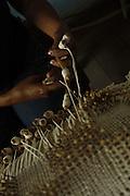 Santana do Cariri_CE, Brasil.<br /> <br /> Detalhes de renda de bilro feitas no Casarao do Coronel Felinto em Santana do Cariri, Ceara.<br /> <br /> Craft in Casarao of Colonel Felinto in Santana Cariri, Ceara.<br /> <br /> Foto: LEO DRUMOND / NITRO