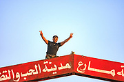 A member of the Free Syrian Army (FSA) also local resident of Marea, is saluting me with two fingers as he stands on an entry welcoming sign of Marea on Wednesday, June 27, 2012. (Photo by Vudi Xhymshiti)