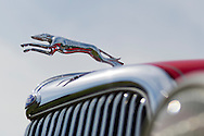 April 28, 2013 - Floral Park, New York, U.S. - A leaping dog hood ornament, seen in closeup, is on a red 1934 Ford 2-door sedan at the Antique Auto Show, where New York Antique Auto Club members exhibited their cars on the farmhouse grounds of Queens County Farm Museum. Its owner, Dennis Kusold of Franklin Square, explained the car has its original steel body and frame.