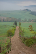 A dirt track leads to a Chianti estate and villa, north of Siena, Tuscany, Italy.