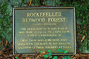 Dedication plaque in the Rockefeller Grove, Humboldt Redwoods State Park, California
