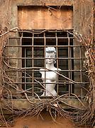 Shop mannequin behind window grate, Via Giulia, Rome, Italy.