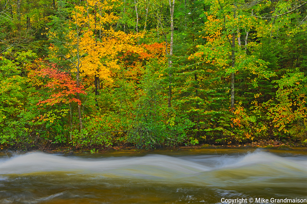 Berry Creek in autumn<br />