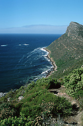 July 7, 2015 - Coast, Cape of good Hope, South Africa (Credit Image: © Spillner, G/DPA/ZUMA Wire)