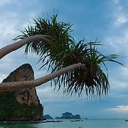 Tourists sunbathing on Railay beach, Krabi