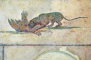 Roman Fresco of a cat killing a bird from  The Large Columbarium in Villa Doria Panphilj, Rome. A columbarium is usually a type of tomb with walls lined by niches that hold urns containing the ashes of the dead.  Large columbaria were built in Rome between the end of the Republican Era and the Flavio Principality (second half of the first century AD).  Museo Nazionale Romano ( National Roman Museum), Rome, Italy. .<br /> <br /> If you prefer to buy from our ALAMY PHOTO LIBRARY  Collection visit : https://www.alamy.com/portfolio/paul-williams-funkystock/national-roman-museum-rome-fresco.html<br /> <br /> Visit our ROMAN ART & HISTORIC SITES PHOTO COLLECTIONS for more photos to download or buy as wall art prints https://funkystock.photoshelter.com/gallery-collection/The-Romans-Art-Artefacts-Antiquities-Historic-Sites-Pictures-Images/C0000r2uLJJo9_s0