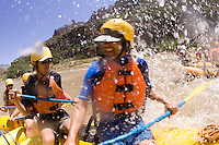 Whitewater rafting on the Yampa River which flows through Dinosaur National Monument in northeastern Utah.