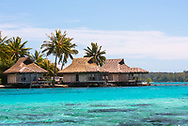 Thatched huts on the clear blue waters of a  lagoon on Moorea in the South Pacific.
