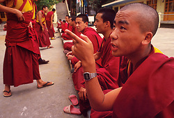 """DHARAMSALA, INDIA  - Monks at the Namgyal Monastery participate in an exercise called """"Debating"""" where one monk drives.home his point by aggressively claping his hands in the face of his audience. The listening monks must show restraint as they make their counterpoint. The focus of cultural life in Dharamsala is the Namgyal Monastery, the tantric college which performs rituals with and for His Holiness the Dalai Lama. The Namgyal Monastery was founded by the Third Dalai Lama in the late sixteenth century. Since then, the monastery has exclusively served the Dalai Lamas. A distinctive feature of this monastery is its diversity of practice: prayers and rituals of all the major schools of Tibetan Buddhism are performed by Namgyal monks. The monastery is now situated next to the Tsuglag Khang, or the Central Cathedral, across from the Dalai Lama's residence. Young monks can often be seen studying, and practicing debate in the courtyard leading to His Holiness' residence. At present, the monastery has more than 180 monks, of which the younger monks study the major texts of Buddhist Sutra and Tantra.(PHOTO © JOCK FISTICK)"""