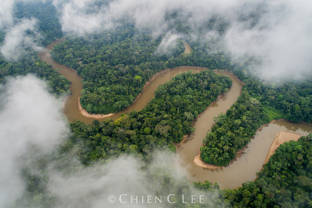 Spanning nearly 7 million square kilometers, it is difficult to conceptualize just how vast the Amazon rainforest is. Here, the Tiputini River winds its way through a tiny corner of the Amazon Basin in eastern Ecuador, eventually emptying its waters into Peru, Brazil, and then the Atlantic Ocean nearly 3 thousand kilometers away. Having lost nearly 20% of its forest cover in recent decades, the Basin is still under siege today from threats such as mining, oil drilling, and clearing for farming. Despite these losses, much still remains intact and just as imperative as ever to continue protective efforts for these invaluable forests. Yasuní National Park, Ecuador.