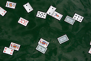 Some playing cards are floating on the surface of water.