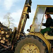 Scackleton sawmill manager Sally Edwards lifts a load of timber using a forklift truck, North Yorkshire, UK. The village of Scackleton is in the Howardian Hills AONB, a landscape with well-wooded rolling countryside, patchwork of arable and pasture fields, scenic villages and historic country houses with classic parkland landscapes.