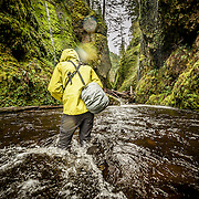 Sunday, March 15, 2015: Brent Doscher and I hike through the Columbia River Gorge off the historic Route 30 in Portland, Oregon .  Photo credit; Michael Der