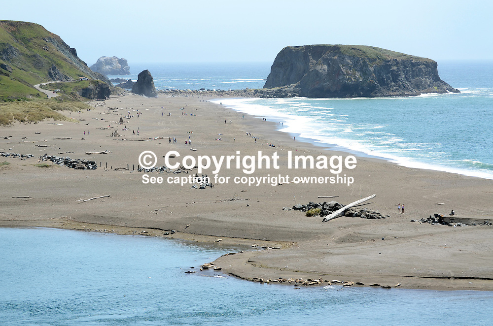 Coastline, Pacific Ocean, near Jenner, Sonoma County, California, USA, near where the Russian River enters the sea. Seals and their pups bask on a sandbank in the foreground.  201304292057<br /> <br /> Copyright Image from Victor Patterson, 54 Dorchester Park, Belfast, UK, BT9 6RJ<br /> <br /> Tel: +44 28 9066 1296<br /> Mob: +44 7802 353836<br /> Voicemail +44 20 8816 7153<br /> Skype: victorpattersonbelfast<br /> Email: victorpatterson@me.com<br /> Email: victorpatterson@ireland.com (back-up)<br /> <br /> IMPORTANT: If you wish to use this image or any other of my images please go to www.victorpatterson.com and click on the Terms & Conditions. Then contact me by email or phone with the reference number(s) of the image(s) concerned.