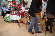Two Whippets at the local community Sunday market in the village of Husthwaite, North Yorkshire, England, UK. Over 20 stalls with a mixture of old favourites and new stalls lelling locally made products.