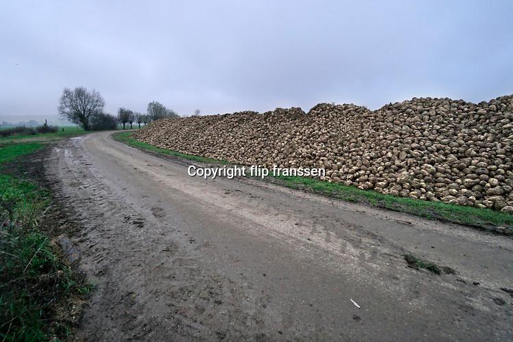Nederland, Kekerdom, 2-12-2020 Grote stapel, berg, suikerbieten ligt op het land tijdens de suikerbietencampagne. Foto: ANP/ Hollandse Hoogte/ Flip Franssen