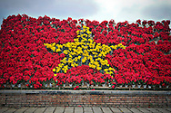 The Vietnamese flag composed of potted plants is arranged along a sidewalk in Hue, Vietnam, Southeast Asia