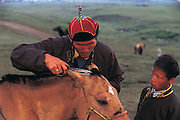 Trimming horses mane<br /> Naadam annual festival<br /> Ulaanbaatar<br /> Mongolia