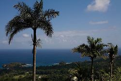 Views of the sea around Port Antonio.  The Geejam is a luxury boutique hotel with a state of the art recording studio that has attracted famous musicians to make their albums.