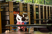 Bucky Badger in the UW Law Library. (Photo © Andy Manis)