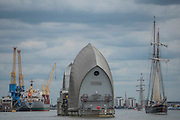 Passing the Thames Barrier - Royal Greenwich Tall Ships Festival with a fleet of square rigged ships moored on the Thames at Greenwich and Woolwich. The fleet includes two of the biggest Class A Tall Ships - the Dar Mlodziezy and Santa Maria Manuela - which are moored on Tall Ships Island in the river off Greenwich. Tall Ships Festival Day on Saturday 29 August featured free family entertainment and the chance to enjoy a taste of life on the high seas.