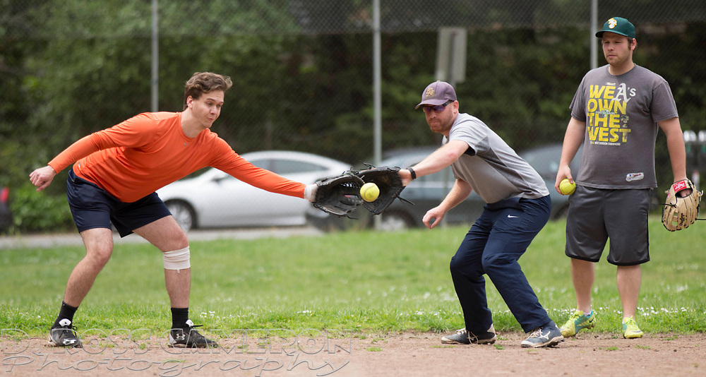 Ian Acredolo, left, and Casey Hellman both reach for a grounder during batting practice, as the Montclair softball league celebrates its 50th season, Saturday, April 22, 2017, at Montclair Park in Oakland, Calif. The pickup softball game, played every Saturday by a group of enthusiasts ranging in age from 20 to 75, started in 1968 in Berkeley and moved to Montclair about 25 years ago. (Photo by D. Ross Cameron)