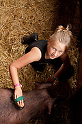 A young girl grooms one of her pigs prior to showing. The hairdryers are out and the shampoo is flowing at the Great Yorkshire Show, one of Britain's biggest agricultural shows. Its famous for its competitive displays of livestock. The event, established in 1837, attracts over 125 000 visitors a year and has over 10 000 entries to its pedigree competitions ranging from pigeons and rabbits to bulls and shire horses. At the heart of the show is the passion of the exhibitors who spend hundreds of hours ( and pounds)  training, preparing and grooming their animals.
