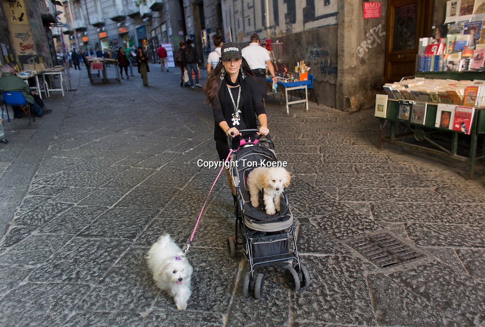 walking the dogs in Naples