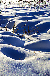 Field With Snow