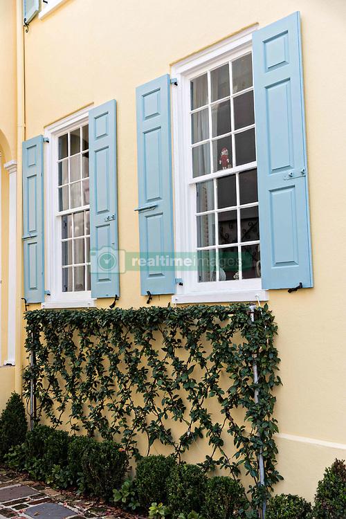 December 21, 2017 - Charleston, South Carolina, United States of America - Vines decorate a yellow wall on a historic home along King Street in Charleston, SC. (Credit Image: © Richard Ellis via ZUMA Wire)
