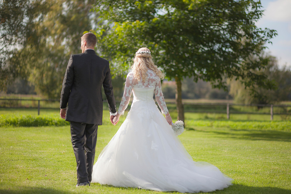 Rear view of a newlywed couple walking on grass, Ammersee, Upper Bavaria, Bavaria, Germany