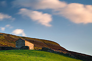 Evening light on one of Swaledale's many barns. Below High Harker Hill, Harkerside Moor. Yorkshire Dales, UK