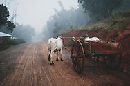 Shan State, Myanmar - November 4, 2011: An ox cart hauling red soil waits on the side of a dirt road early in the morning several miles west of Inle Lake in Shan State.