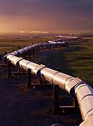 Evening light illuminating the Trans Alaska Pipeline north of Pump Station 4, Alaska.