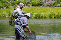 Fly anglers on the Henry's Fork River in Idaho release a rainbow trout caught from the Miliionaire's Pool.
