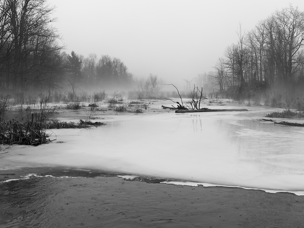 http://Duncan.co/ice-and-trees-in-the-fog