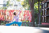 Heeki Park at Sanou Inari Jinja, Tokyo - Japan