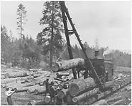 RD084 Logging - La Madera