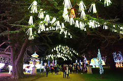 © Licensed to London News Pictures. 03/02/2016. London, UK. Visitors view the UK Premier of the world famous Magical Lantern Festival comes to Chiswick House. The festival is a spectacular artistic installation of beautifully sculpted lanterns taking various forms from animals and birds to buildings and abstract lantern designs of all shapes and sizes. Photo credit: Ray Tang/LNP