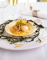 scallops dish on shell with sea salt and seaweed