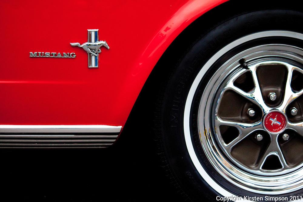 Mustangs in Monterey