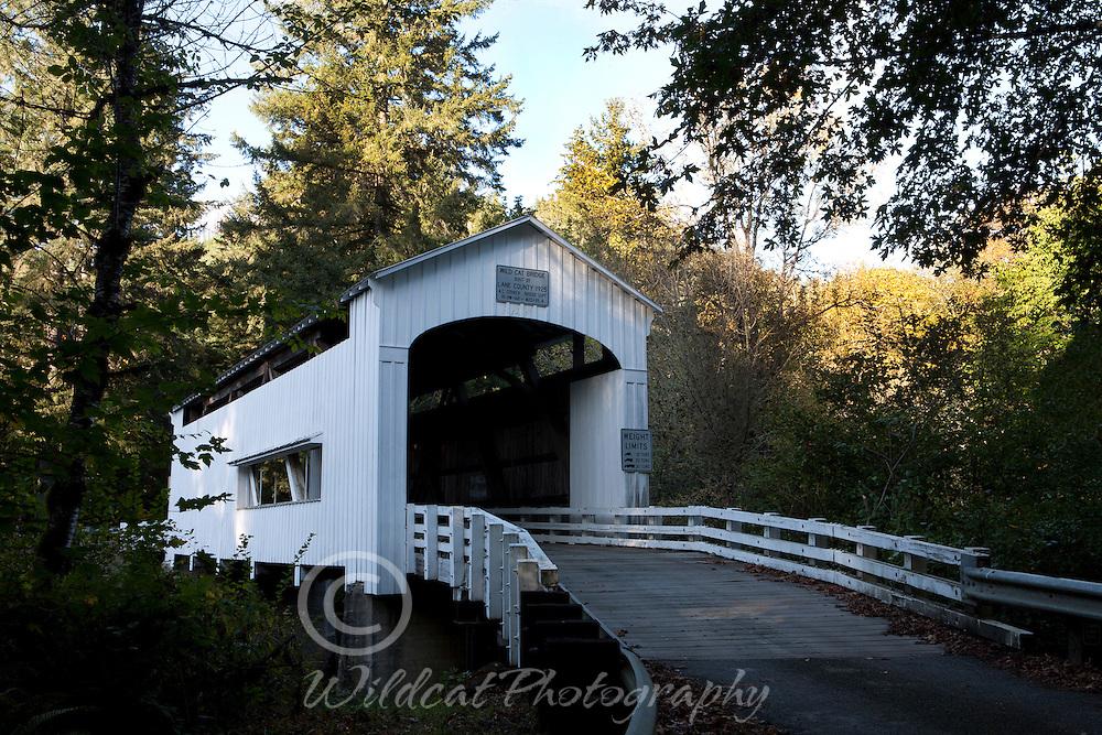 Covered Bridge over Wildcat Creek