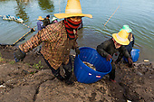 Thailand's Shrimp Industry In Crisis